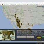 Jaguar observations database