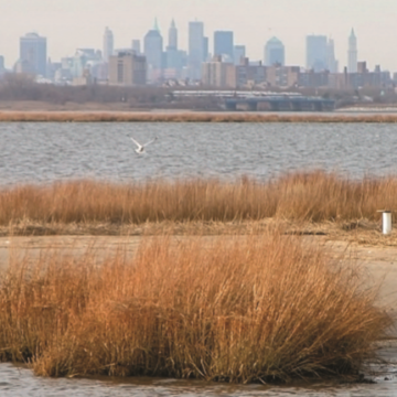 Jamaica Bay NYC